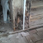 Последствия пожара 1997 года