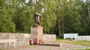 Лобановское кладбище фото Николая Пихтина